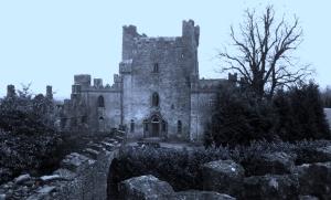 Leap_Castle