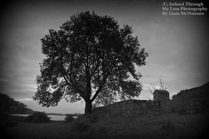 Lough Gur castle - Liam McNamara