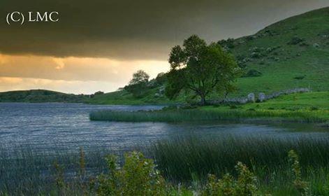 Lough Gur Main - Liam McNamara