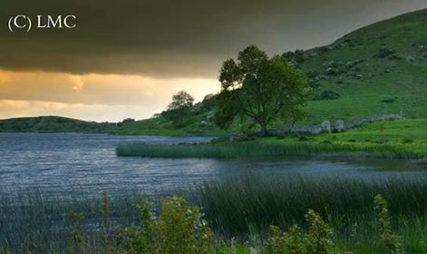 Lough Gur Main - Liam McNamara